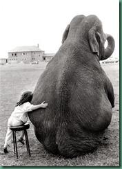 elephant_friend_girl1