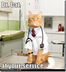 drcat.jpg