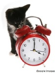 clockcat