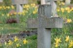 cemetery-300077_640