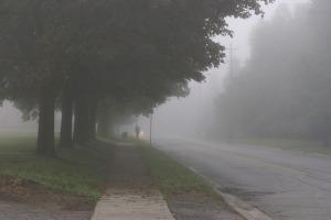 misty-203155_640