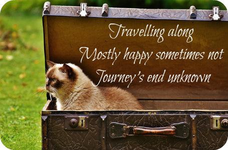 luggage-1645247_640