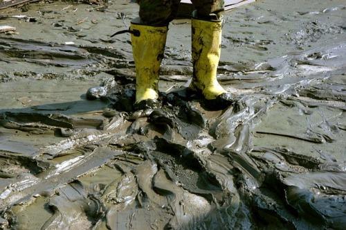 mud-616481_640
