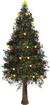 christmas-tree-1891228__340