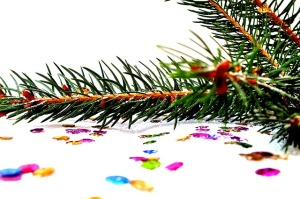 spruce-1040049_640