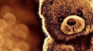 bear-1824882_640