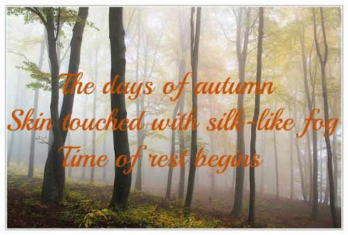 autumn-194834_640b