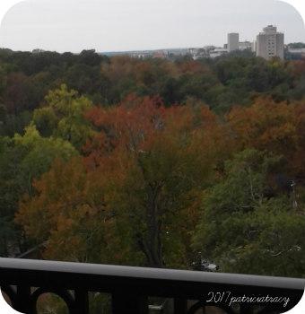 autumnpm